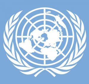 logo VN-verdrag Handicap
